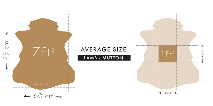 Lamb and ram leathers average dimensions